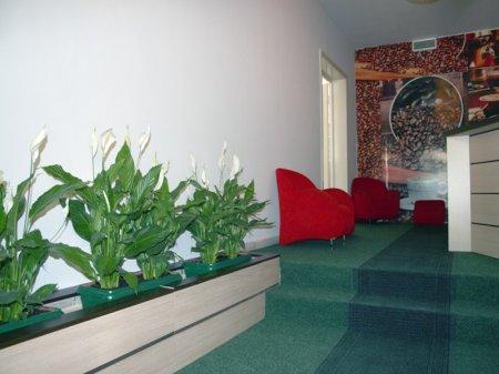 hotel seven tirana hall