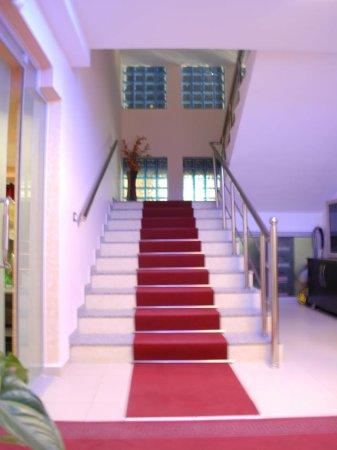 Hotel bardhi kucove albania for Albanesi arredamenti